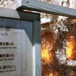 神宮外苑イベント会場で起きた火災で5歳の男児が死亡