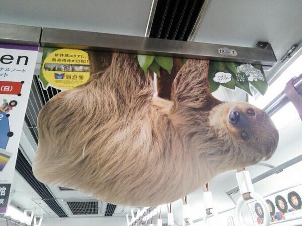 電車の 中吊り広告 が凄かった